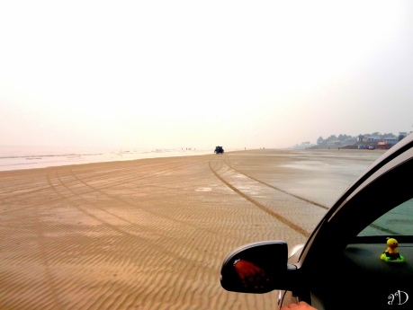 Drive Through the Mandarmani Beach